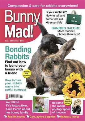 SALE -Bunny Mad Magazine: Issue 24