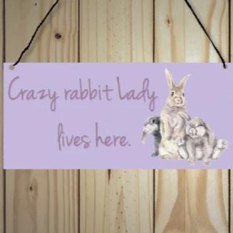 Crazy Rabbit Lady Lives Here Metal Sign