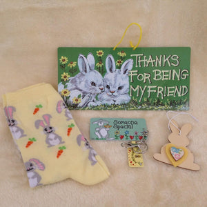 Friend Bunny Rabbit Christmas Gift Set