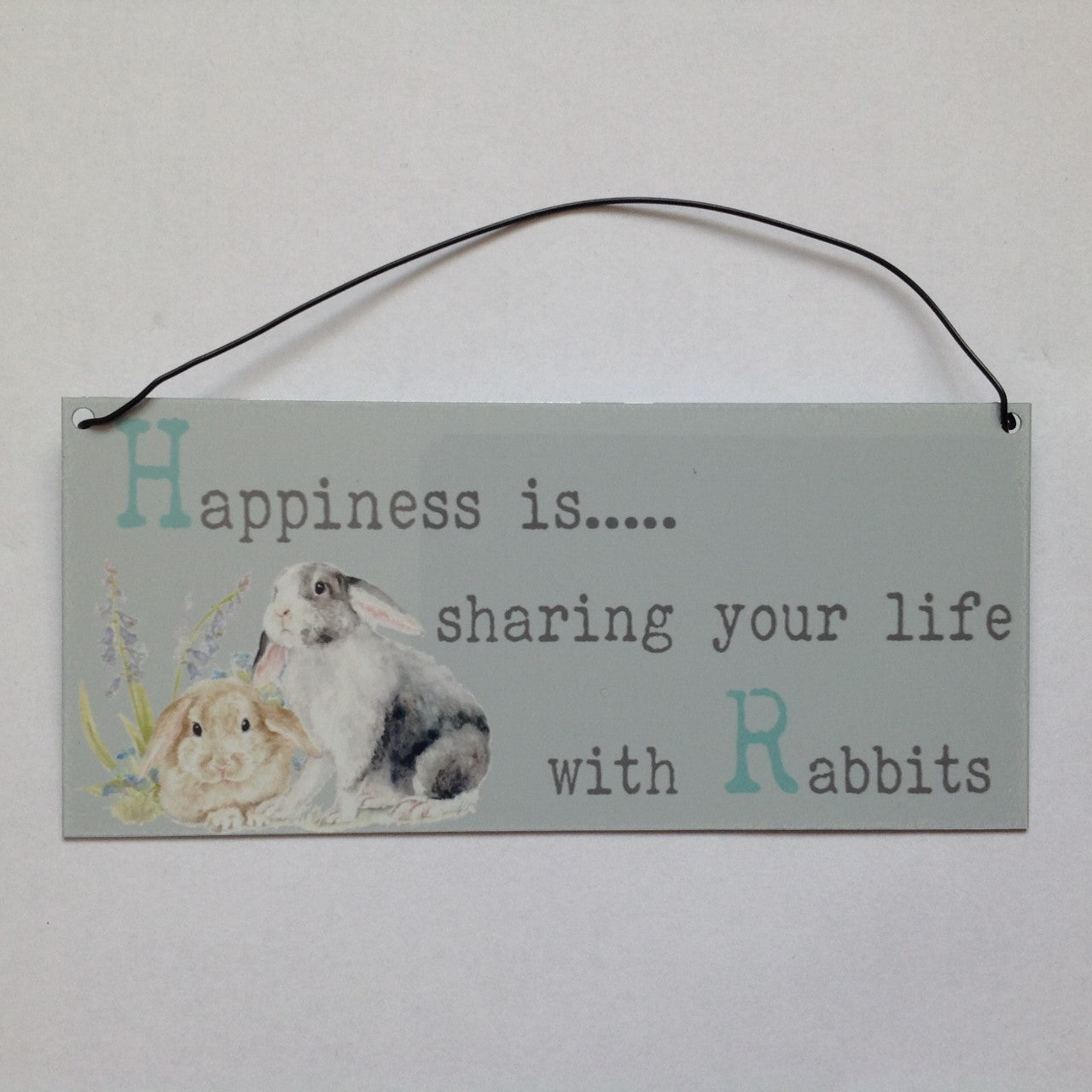 Happiness is... sharing your life with Rabbits Sign