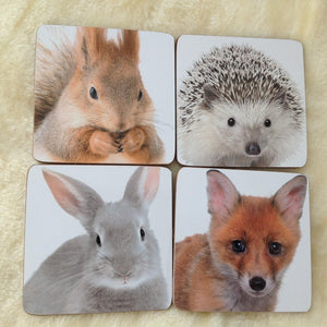 Woodland Animals Coasters - Set of 4