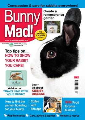 *Special Offer* Bunny Mad Magazine: Issues 33 & 34