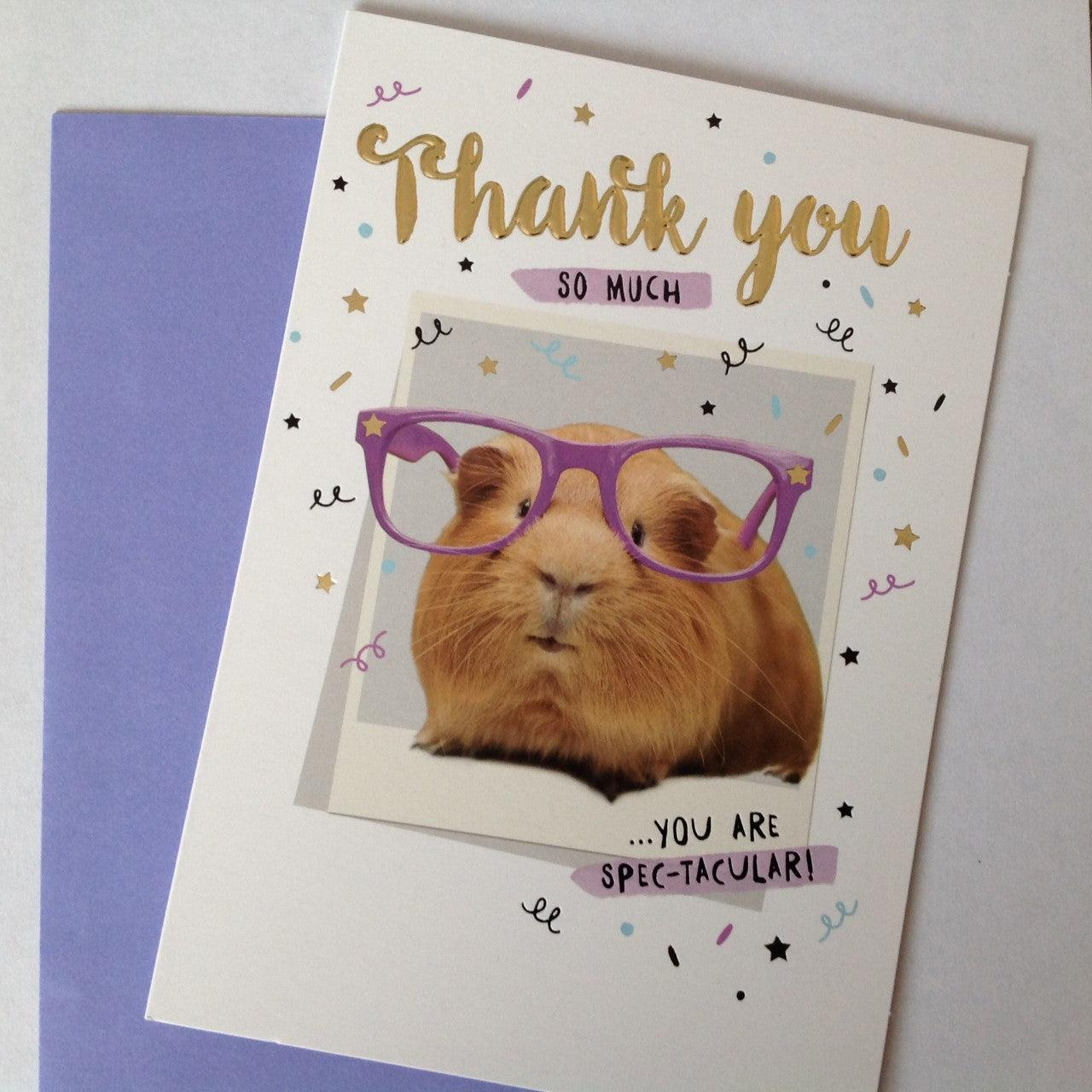 Guinea Pig Thank You Card