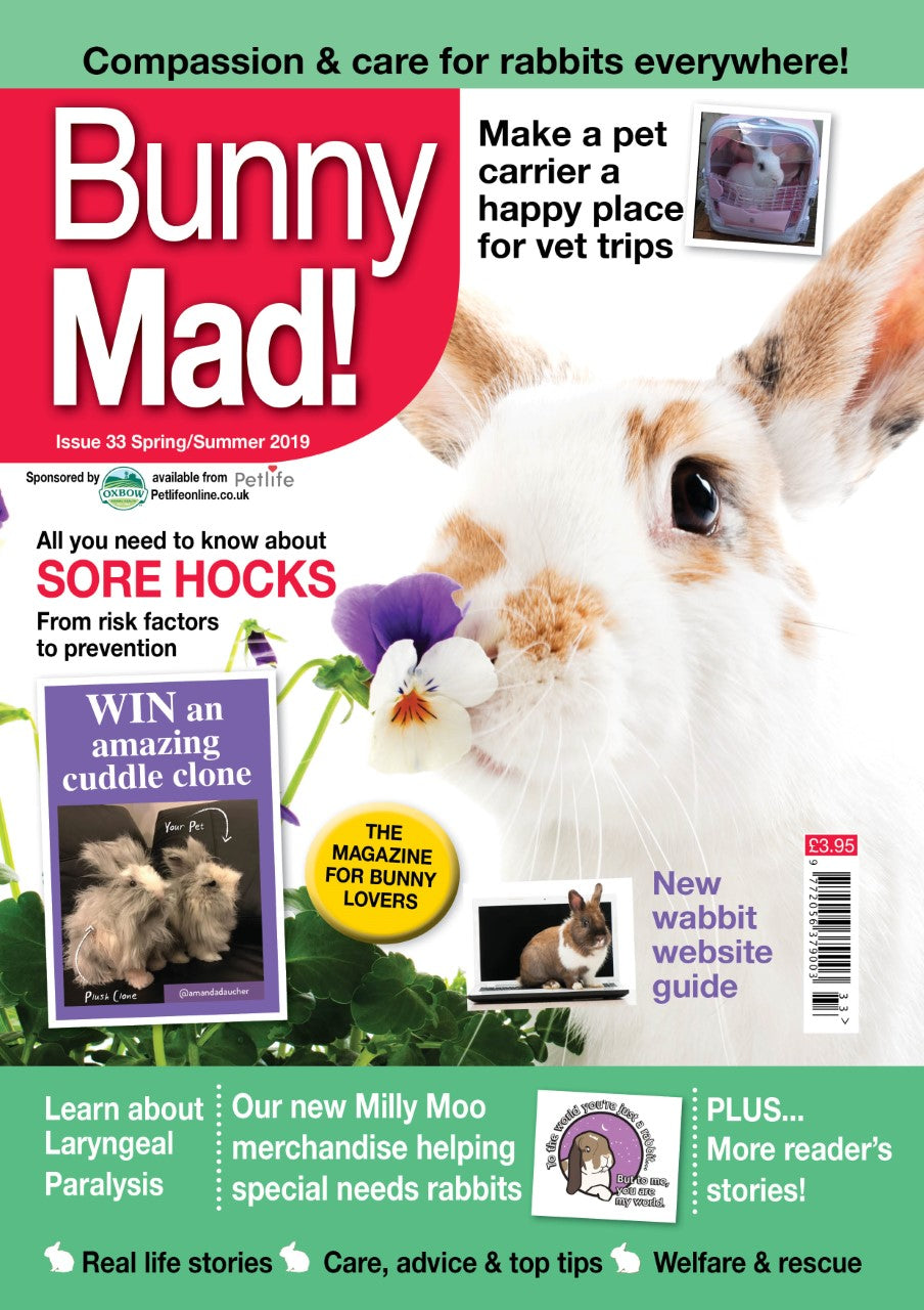 Bunny Mad Magazine: Issues 33- To Clear