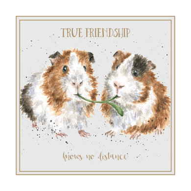 Wrendale Designs True Friendship Guinea Pig Card