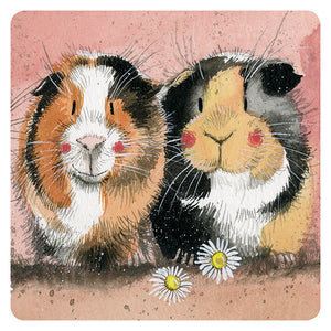 Alex Clark Two Guinea Pigs Coaster