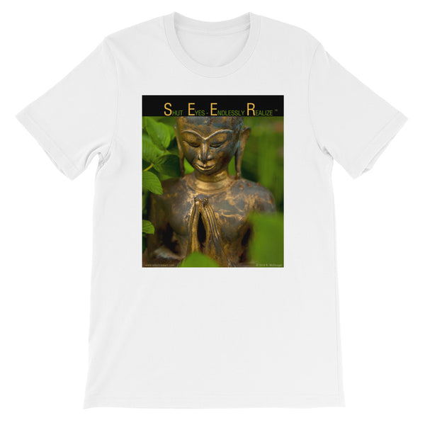 S.E.E.R. - Shut Eyes - Endlessly Realize  - statue in grass