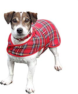 Tartan Dog Coats, dog leashes, dog collars