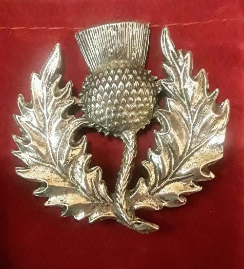 Large Thistle Pewter Pin