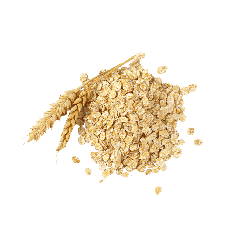 Small mound of Rolled Oats with wheat stalks.