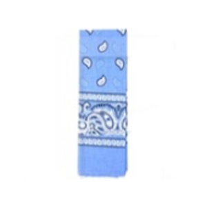 Bandana Pattern Light Blue