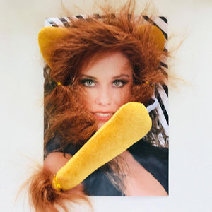 Lion Dress Up Kit