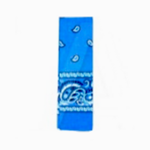 Bandana Pattern Blue