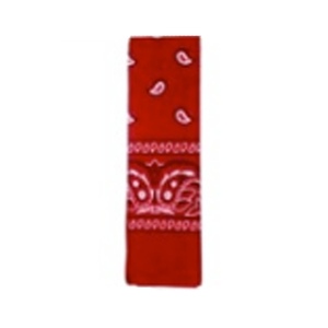 Bandana Pattern Red