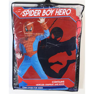 Spider Boy Hero Costume