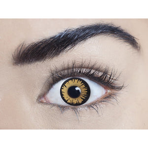 Twilight Bella Contacts