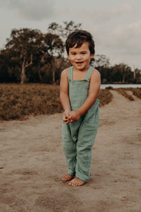 Stardust Dungarees - little giant