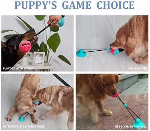 Active Molar Bite Toy