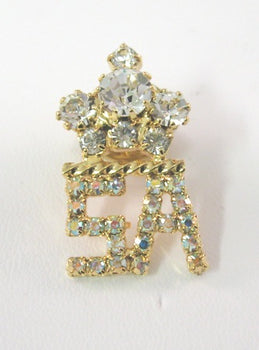 Daughters of the Nile-Supreme Appointee Station Pin