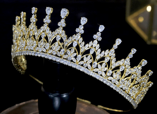 Floral Beauty CZ  Tiara - Gold or Silver