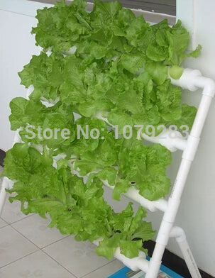 36 cup Aeroponics Propagator Pot with Cycle Timer