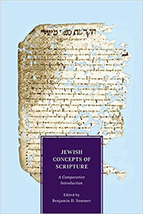 Jewish Concepts of Scripture: A Comparative Introduction- Paperback – by Benjamin D. Sommer