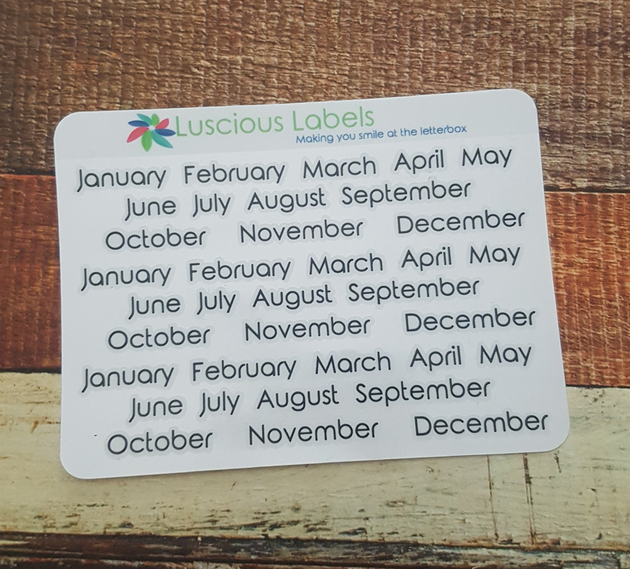 Month Stickers- suitable for most inserts