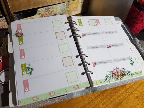 Weeks Kits for Small Planners - Painted Protea