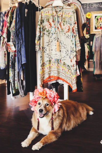 Gracie Says... Flowers For Fall!