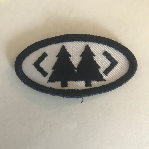 That Merit Badge