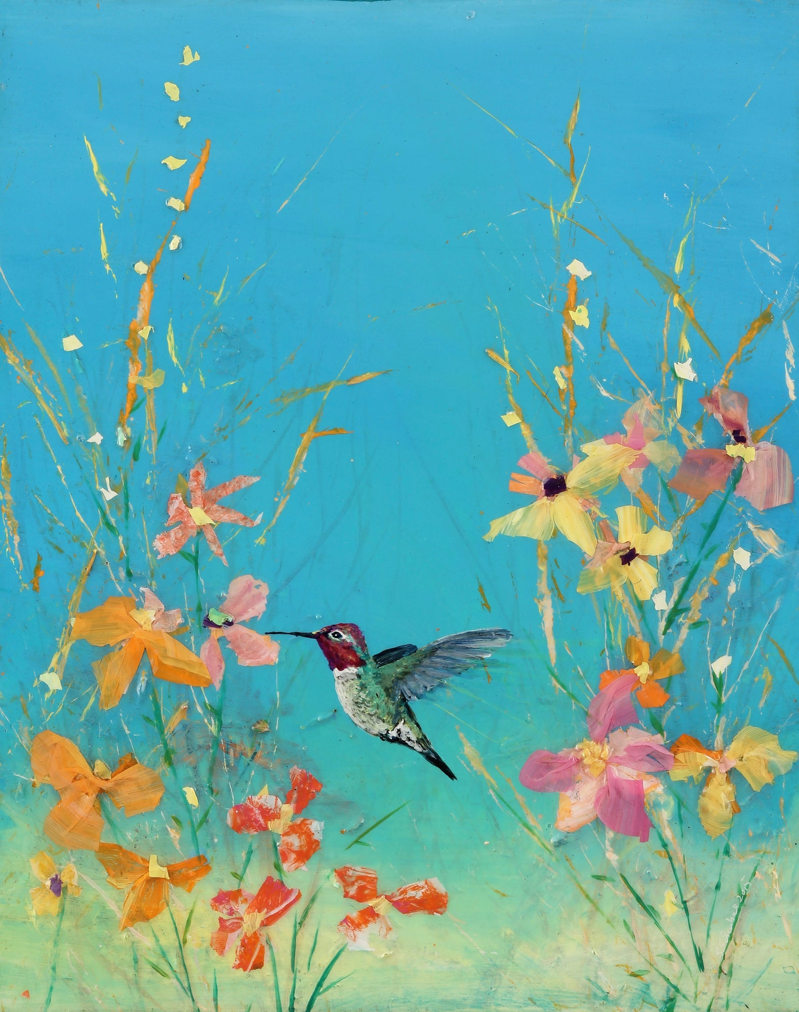 Summer Blue Sky Anna Hummingbird