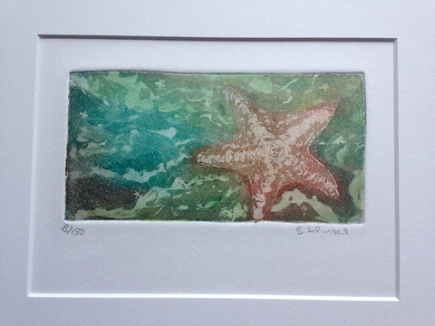 11x14 bat starfish