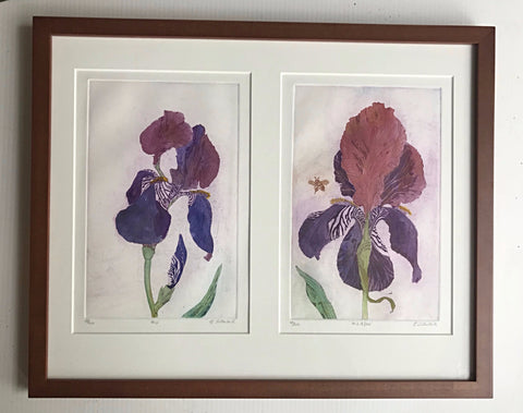 Framed Purple Iris 16x20