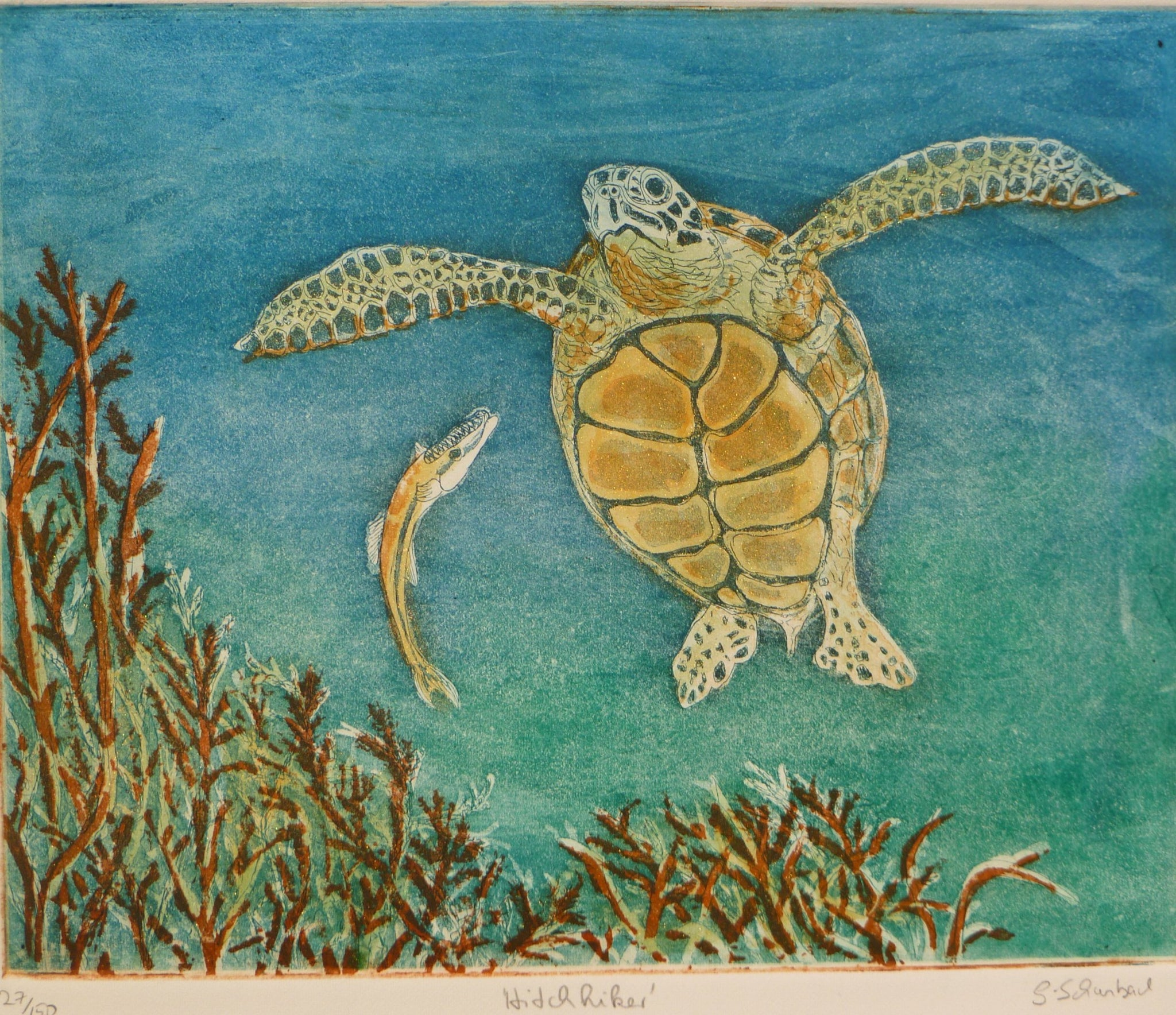Hitchhiker Turtle Blue Tone (two-plate etching)