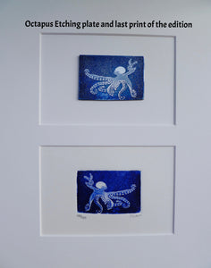 Framed Octopus and other Original Etching Plate