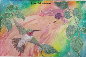 framed 16x20 Hummingbird in flights