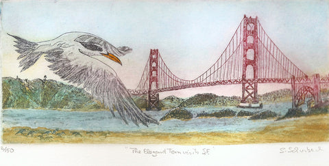 framed 12x16 : The Elegant Tern Visits San Francisco