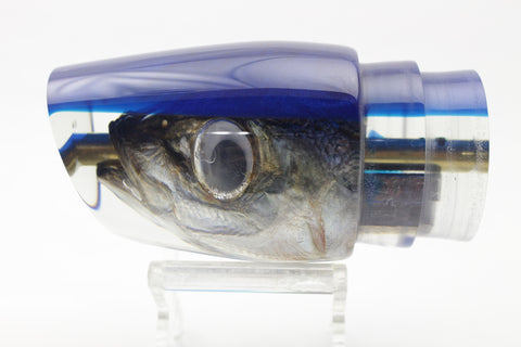 "Koya Lures Real Opelu Fish Head Blue Back Large 861 14"" 7oz"