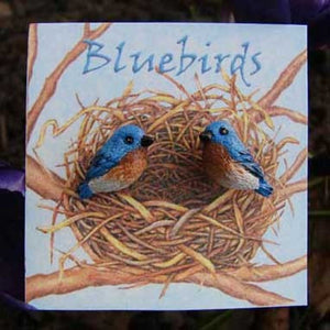 "WrenHouse: Earrings, ""Bluebird"""