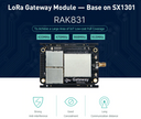 RAK831 and FT2232H Lora Gateway Concentrator Module based on SX1301