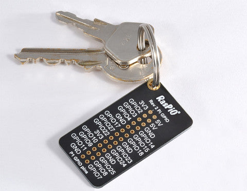 RasPiO Labels Board on Keyring