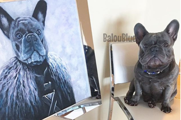 pet portrait painting, custom oil portraits, paintings of horses, kitten paintings, dog portraits