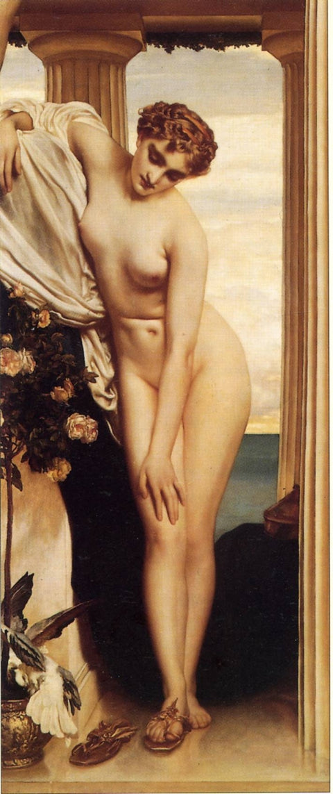 Venus Disrobing for the Bath