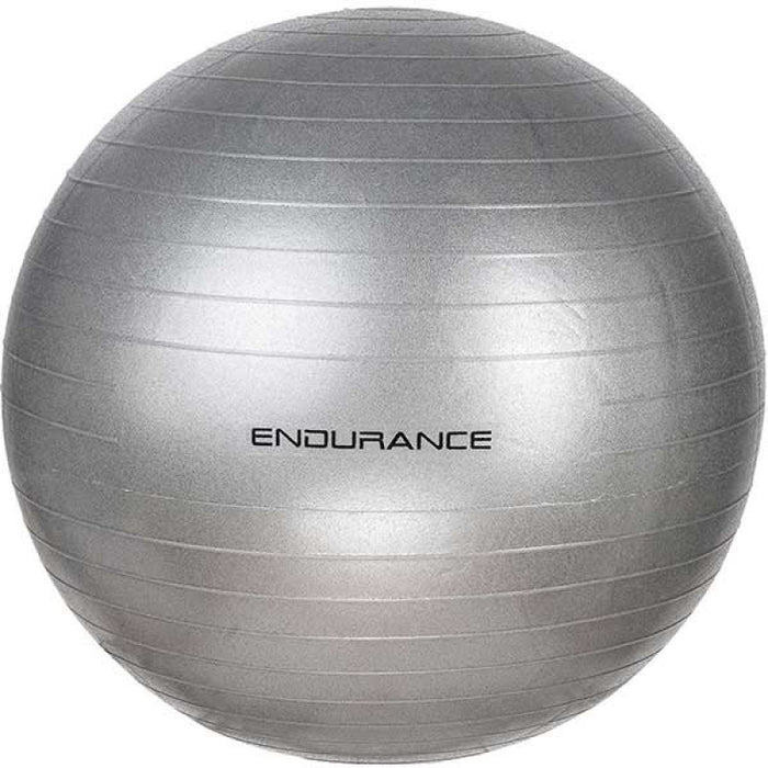 ENDURANCE Gym ball 55 CM Fitness Equipment 8889 silver