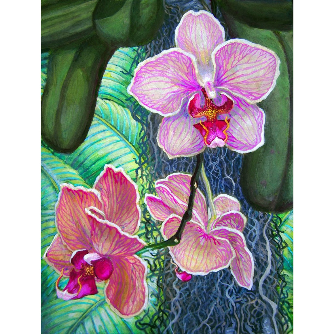 "'Pink Moth Orchid' Fine Art Painting Giclee Limited Edition Artist Proof 19"" x 23"" Framed"