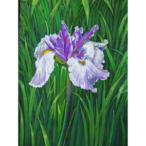 'Purple Iris' Fine Art Painting Reproduction on Acrylic