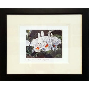 'White Orchid' Limited Edition