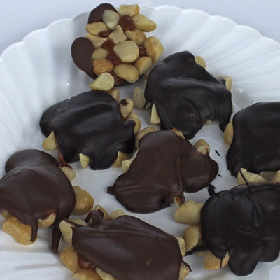 Our Famous Macadamia Nut Honu (Assorted Milk/Dark)