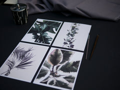 botanical prints for wholesale