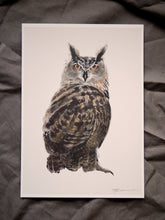 Eagle Owl print - About Face Illustration